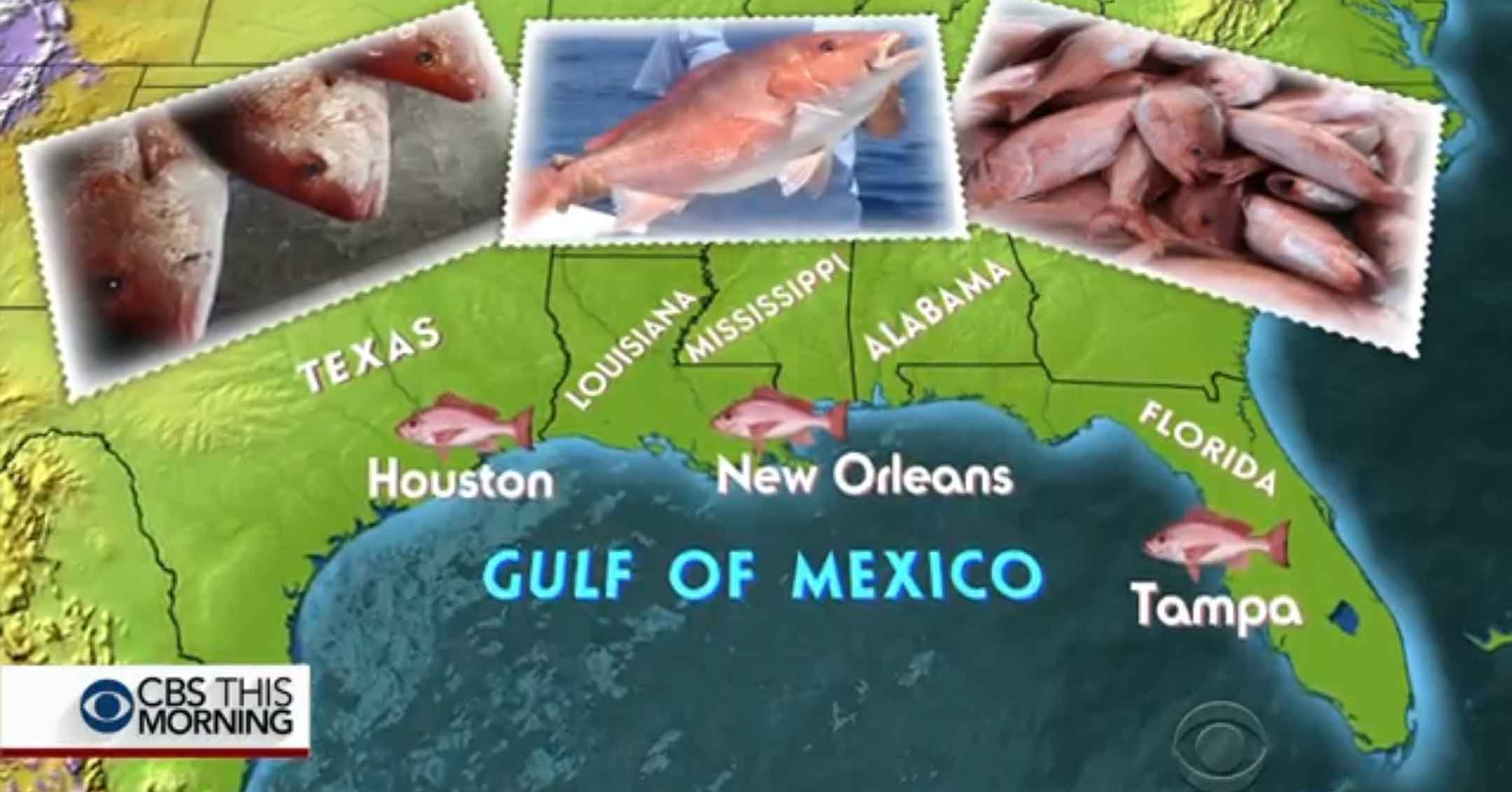CBS This Morning feature | Ariel Seafoods